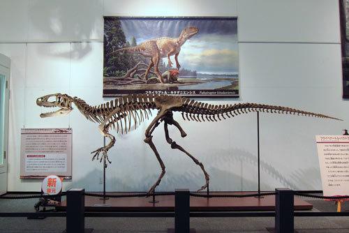 福井恐竜博物館20周年!_e0045113_18091573.jpg