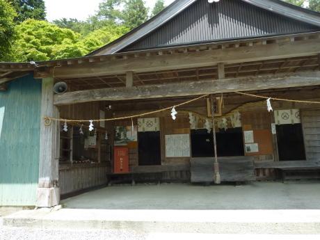 キレンゲショウマに会いに行く 『剣山・一ノ森』 2日目_c0218841_15033443.jpg