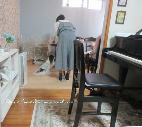 コロナ対策「換気」☆ピアノ教室通信配布_d0165645_16042658.jpg