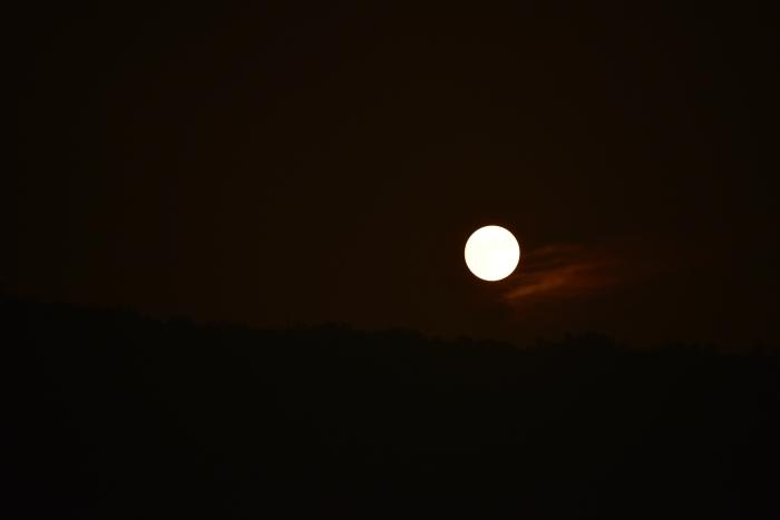赤い月が昇る_c0122455_18394894.jpg