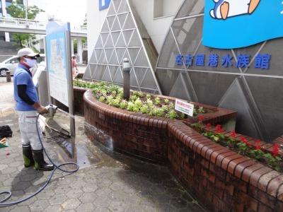 ガーデンふ頭総合案内所前花壇の植替えR2.7.22_d0338682_15054530.jpg