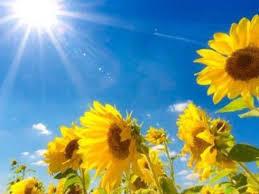夏季休暇_a0049808_15351139.jpeg