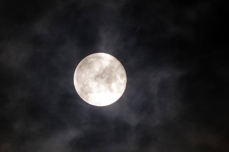 8/4 月夜_a0314113_10255116.jpg