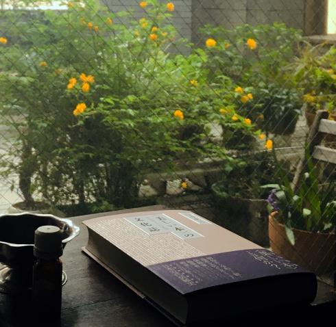 臼田捷治『〈美しい本〉の文化誌 装幀百十年の系譜』_e0000935_17185247.jpg