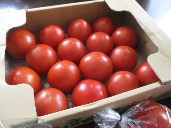 今年最後のトマト買い出しツア~&デンスケ西瓜を戴いた~~(^^♪_a0279743_14381380.jpg