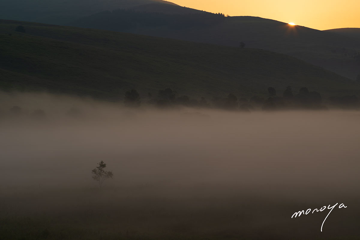 湿原の朝_c0085877_05594004.jpg