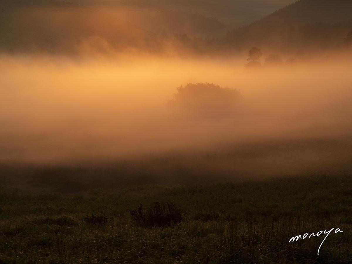 湿原の朝_c0085877_05594808.jpg