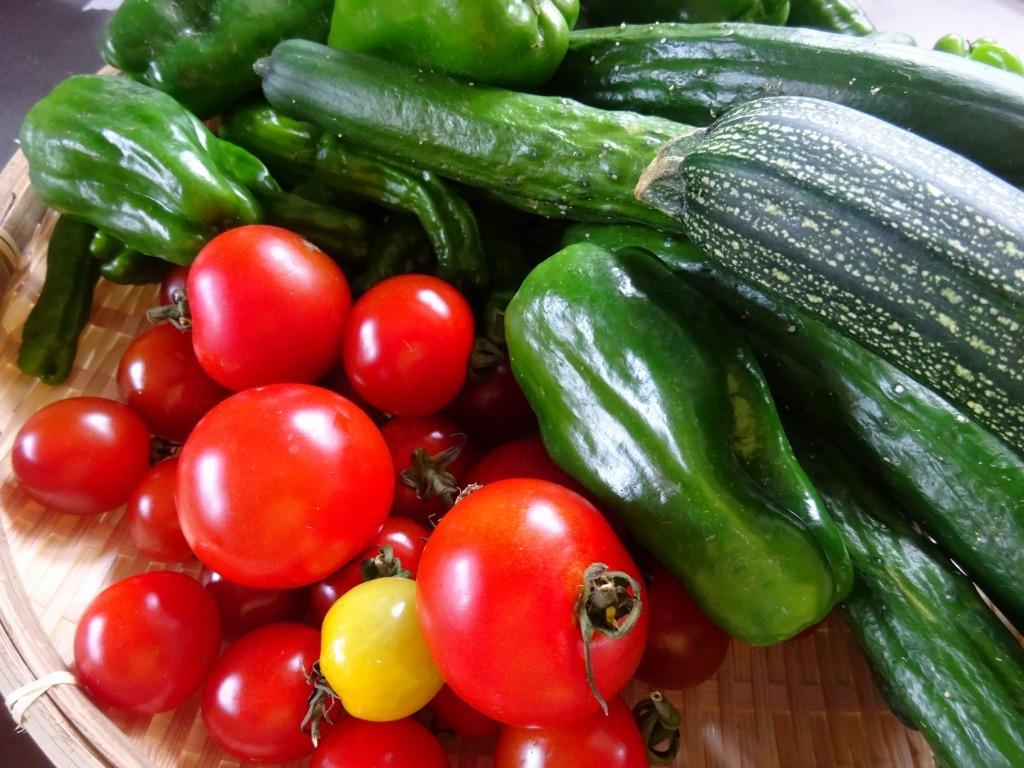 実家からの野菜2020 第2段!ジャガイモ三種、玉葱大量、他トマト・ピーマン・ズッキーニ・モロッコインゲン・人参_d0061678_11422150.jpg