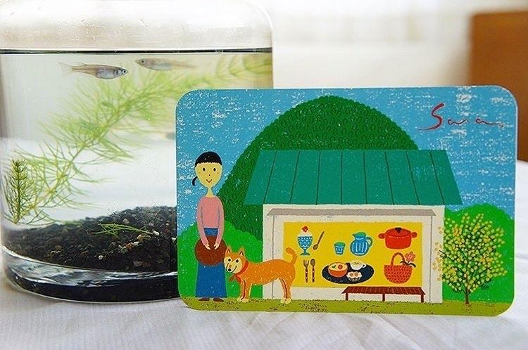 湘南 大磯雑貨屋Cafe「Sara」_f0217978_16040661.jpg