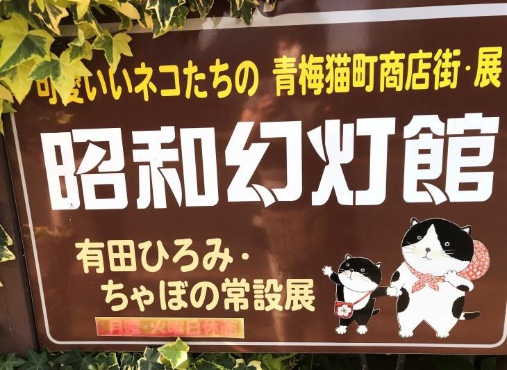 昭和幻燈館 (青梅市)_d0150287_14455518.jpg