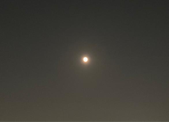 今日もお月さまが綺麗です🌝_f0143188_01465187.jpg