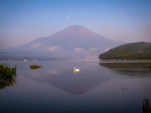 2020.8.6パール富士(平野浜)_e0321032_16291852.jpg