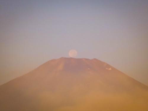 2020.8.6パール富士(平野浜)_e0321032_16302184.jpg