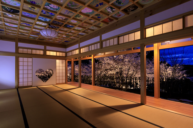 2020桜咲く京都 正壽院ライトアップ_f0155048_23535974.jpg