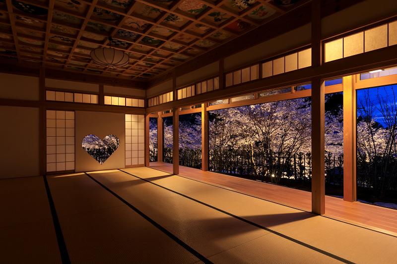 2020桜咲く京都 正壽院ライトアップ_f0155048_23554388.jpg