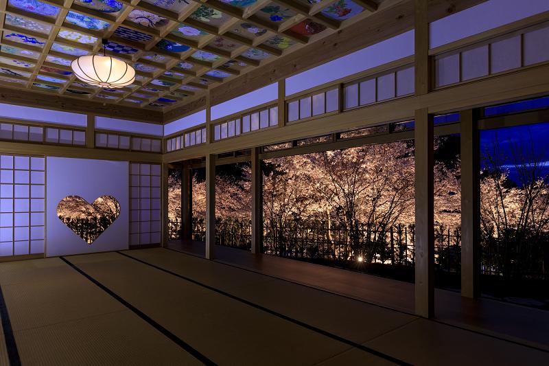 2020桜咲く京都 正壽院ライトアップ_f0155048_23562564.jpg