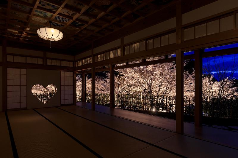 2020桜咲く京都 正壽院ライトアップ_f0155048_23563390.jpg