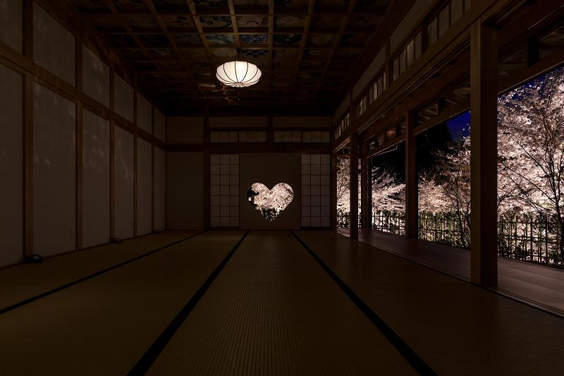 2020桜咲く京都 正壽院ライトアップ_f0155048_23563953.jpg