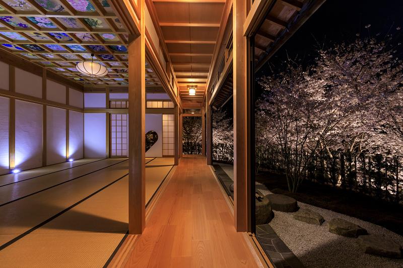 2020桜咲く京都 正壽院ライトアップ_f0155048_23582661.jpg
