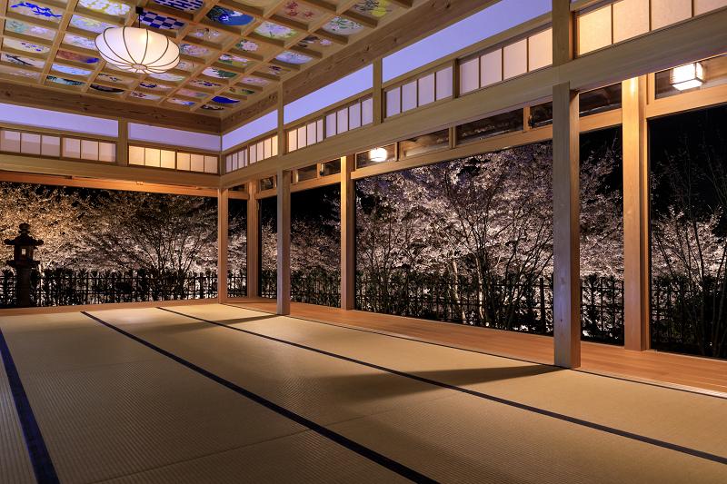 2020桜咲く京都 正壽院ライトアップ_f0155048_23593638.jpg