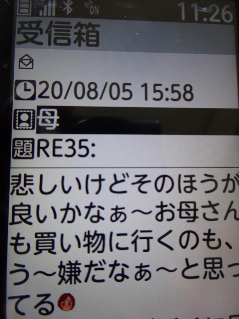 (七月頭)お盆は状況次第で帰ろうかな→返信無し_d0061678_13245239.jpg