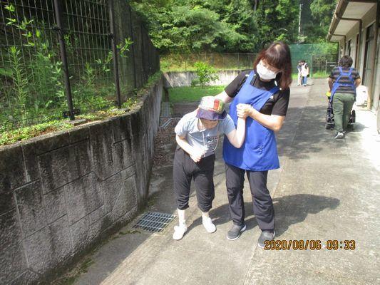 8/6 朝の散歩_a0154110_13393692.jpg