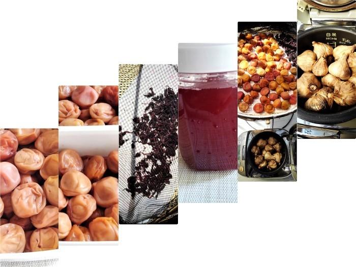 ■自家製保存食【梅干し作りレシピP-3 仕上げ編 /黒ニンニク作りも_b0033423_22021825.jpg