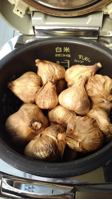 ■自家製保存食【梅干し作りレシピP-3 仕上げ編 /黒ニンニク作りも_b0033423_22274800.jpg