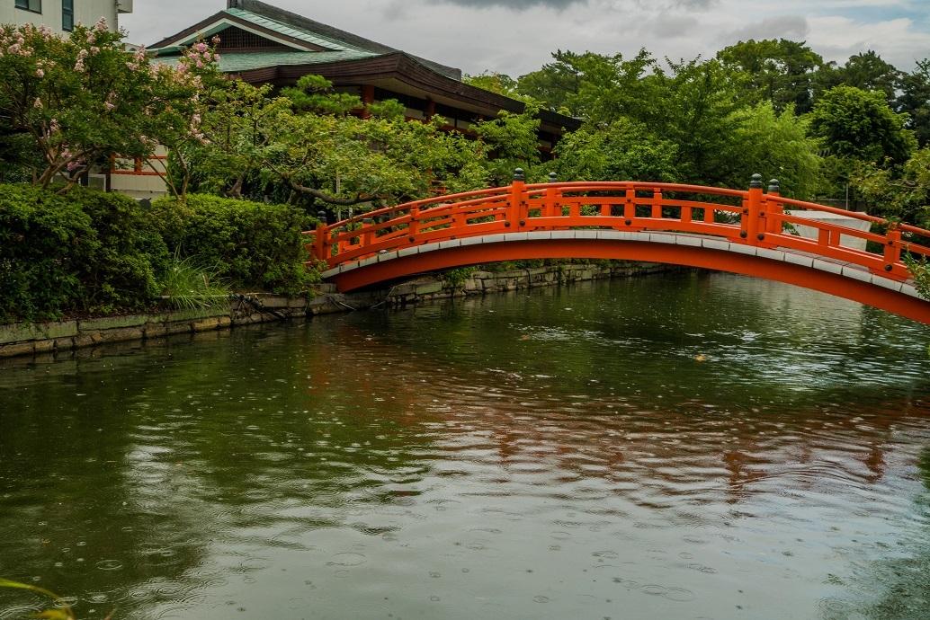 神泉苑の百日紅_e0363038_11075406.jpg