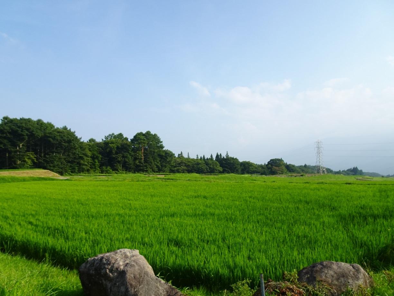 富士見町Tさん邸の現場より 3_a0211886_16445343.jpg