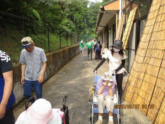8/7 朝の散歩_a0154110_11345339.jpg