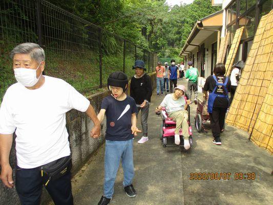 8/7 朝の散歩_a0154110_11345635.jpg