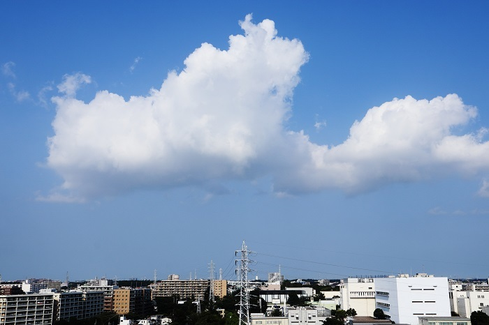 雄大雲(積雲)_b0268615_10511200.jpg