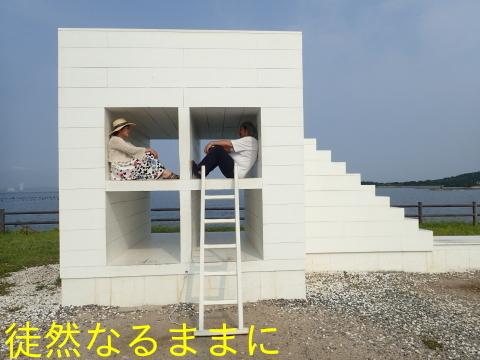 佐久島・師崎のヤクシマルリシジミ_d0285540_20372275.jpg