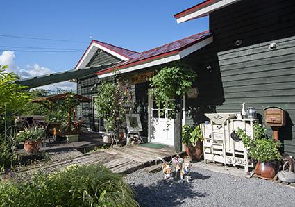 壮瞥町のハナちゃん_a0070350_19325225.jpg