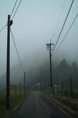 夏休み・・・カブトムシとクワガタ_d0005250_19565575.jpg
