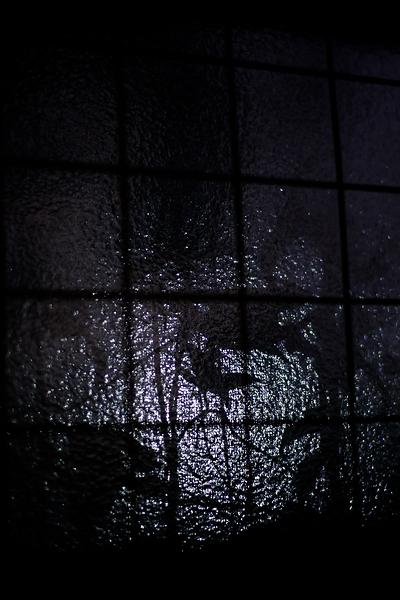 Shadows Of The Night_a0024167_14391564.jpg