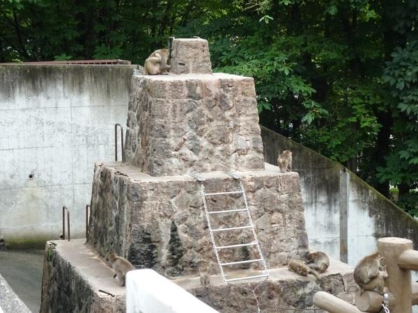 茶臼山動物園(^^)_a0211886_00233100.jpg