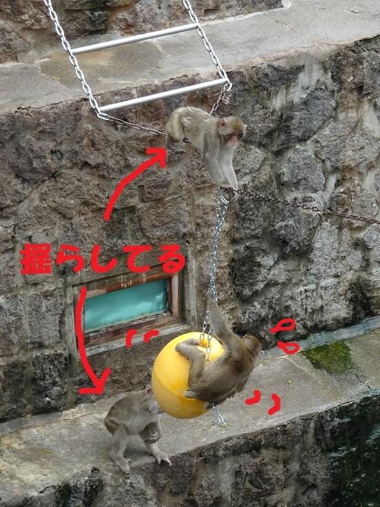 茶臼山動物園(^^)_a0211886_00331916.jpg
