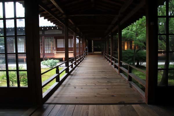 夏の建仁寺拝観_e0048413_18380506.jpg