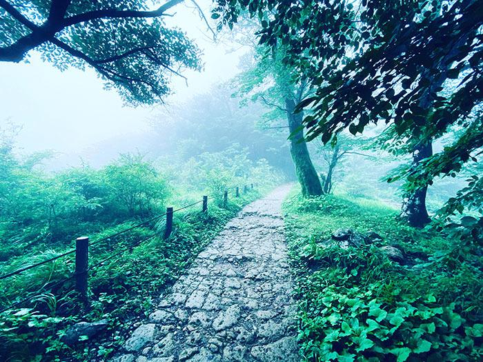 筑波山 / iPhone 11_c0334533_10583578.jpg