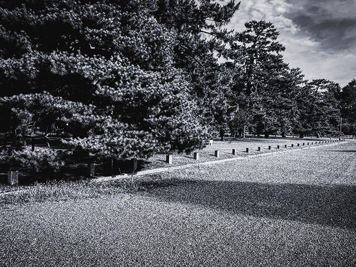 京都御苑 / iPhone 11_c0334533_11250243.jpg