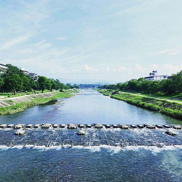 京都市左京区河原町 / iPhone 11_c0334533_11454340.jpg