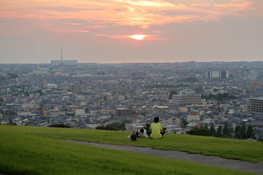 今日の夕焼けとヒマワリ_e0403850_21204604.jpg