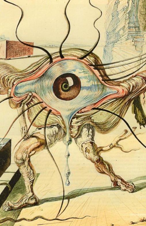 ダリによる画家の目 (JZ)_c0058954_00215051.jpg