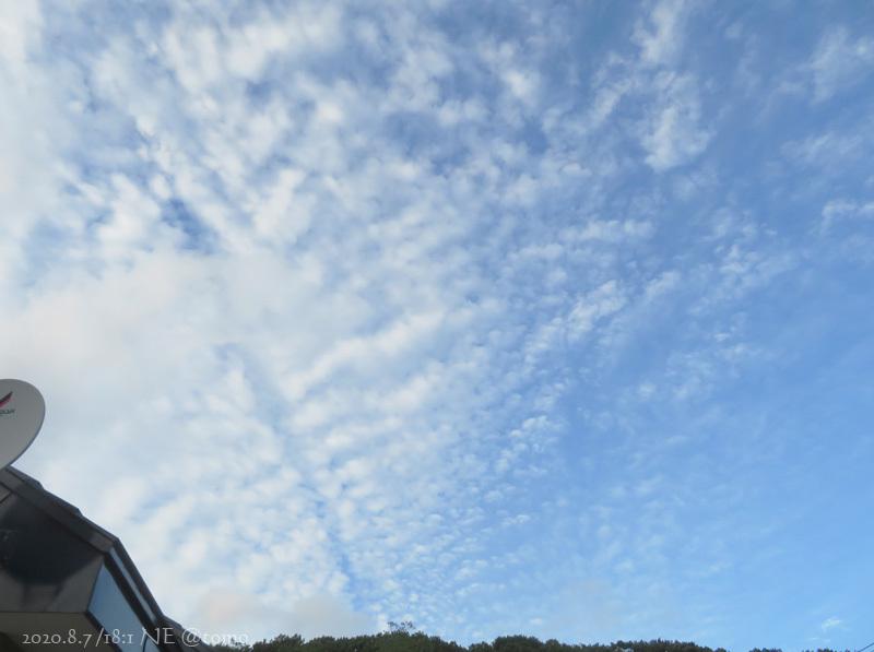 朝から暴風です_f0067179_16350639.jpg