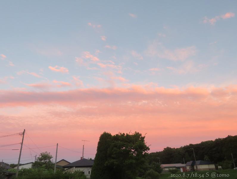 朝から暴風です_f0067179_16351577.jpg
