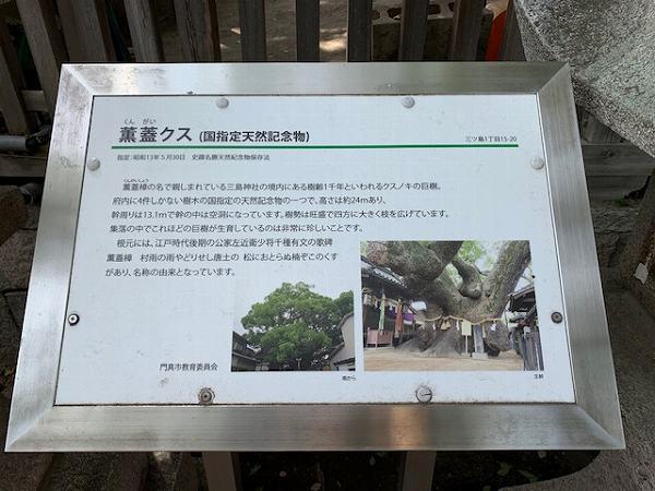 三島神社の大楠_a0126497_22534940.jpg