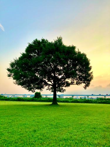 広島と長崎_f0061797_11260109.jpg