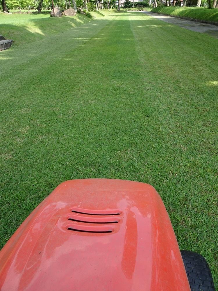 芝刈り作業_c0111229_18210849.jpg